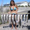 Maria G. caught this nice stringer on topwater lures in October